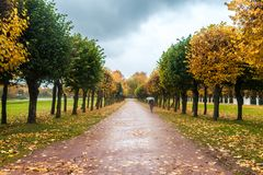 An autumn in a park Kuskovo in Moscow Stock Image