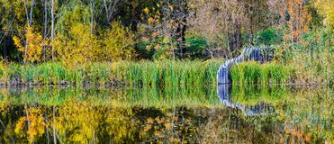 Autumn park with lake. royalty free stock photography