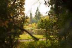Autumn park lake on background. Autumn park lake seen through heavy foliage Stock Photos