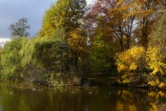 Autumn park lake with bright fall season trees Royalty Free Stock Photography