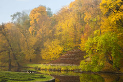Autumn park lake with golden forest. Autumn park lake backgrounded with golden forest Royalty Free Stock Image