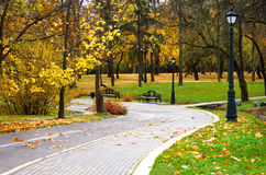 Autumn park, landscape Stock Photography
