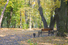 Autumn park landscape Stock Photography
