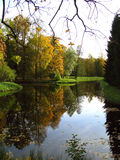 Autumn in a Park Royalty Free Stock Photo