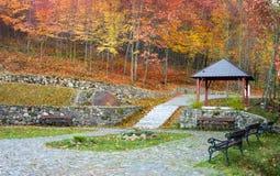 Autumn park landscape Stock Image