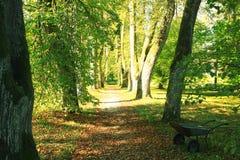 Autumn park landscape Stock Photography