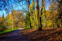 Autumn park landscape under the rays of the sun stock photo
