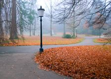 Autumn park with lanterns Royalty Free Stock Photography