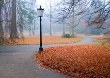 Autumn park with lanterns. Lanterns in an autumn park under the rain Royalty Free Stock Photography