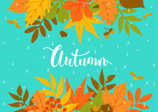 Autumn  park leaves header border background on blue texture with rain drops Royalty Free Stock Images