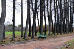 Autumn Park in Leninskiye Gorki Royalty Free Stock Image