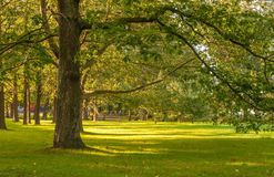 Autumn park in Helsinki Royalty Free Stock Photo