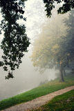 Autumn park on a misty morning. Stock Photo