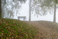Autumn park on a misty morning. Royalty Free Stock Images