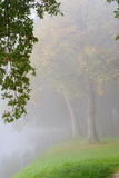Autumn park on a misty morning. Stock Photography
