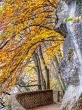 Autumn park path along river bank Royalty Free Stock Photo
