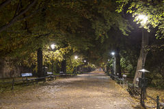 Autumn Park Path by Night with People Stock Photo