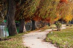 Autumn park path Stock Image