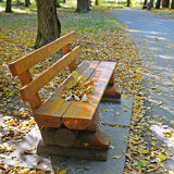 autumn park with paths and benches Stock Photo