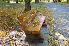 Autumn park with paths and benches Royalty Free Stock Photography