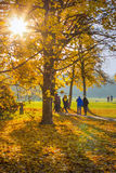 Autumn in park people walking. Blurred as backgrund Royalty Free Stock Photos