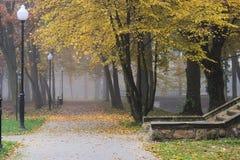 Autumn in the park. Stock Photo