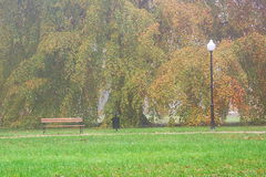 Autumn in the park. Royalty Free Stock Photography