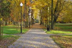Autumn in the park. Royalty Free Stock Image