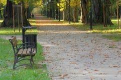 Autumn in the park. Stock Photos