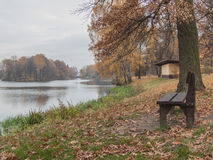 Autumn park. The picturesque autumnal park with a bench by the pond, standing beside her tree. In the distance, visible colored island on the pond Stock Photos