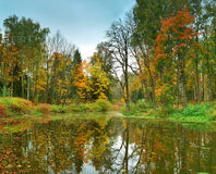 Autumn park with the pond. Panorama of autumn park with the pond Royalty Free Stock Photo