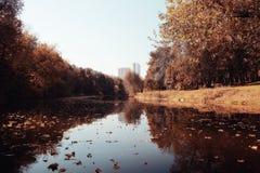 Autumn park with pond Stock Photos