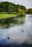 Autumn Park with pond and ducks in the depths of the urban jungle. Fall is the perfect time to gather your thoughts, breathe fresh air. This is the time to Royalty Free Stock Images