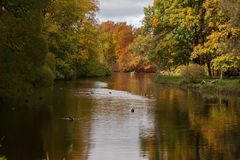 Autumn Park and pond on a sunny day Royalty Free Stock Photo