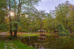 Autumn park with pond and wooden alcoves. Autumn park with pond and wooden alcoves Royalty Free Stock Image