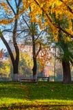 Autumn park on Pravoslavna naberezhna. Uzhgorod, Ukraine - Nov 10, 2012: autumn park on Pravoslavna naberezhna in autumn foliage. ancient building of University stock photography