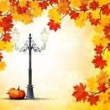 Autumn in the park with a pumpkins under the lamppost Stock Photos