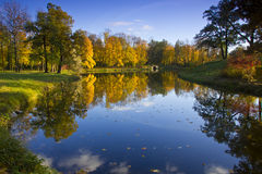 Autumn Park, Rusia Fotos de archivo libres de regalías