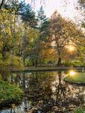 Autumn park scenes Stock Images