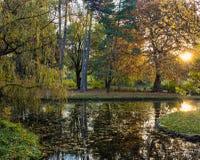 Autumn park scenes Stock Photography