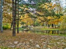 Autumn park scenes Royalty Free Stock Photography