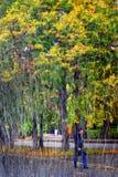 Autumn park seen through the rain. Stock Photo