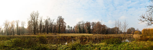 Autumn park with small river panorama Royalty Free Stock Photography