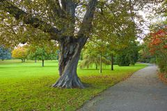 Autumn in the park in South London Royalty Free Stock Photos