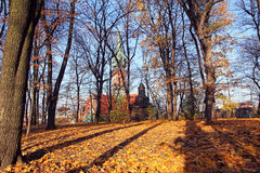 Autumn park and St. Joseph's Church in Krakow, Poland Stock Image