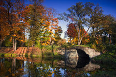 Autumn Park St Petersburg, Ryssland Royaltyfri Fotografi