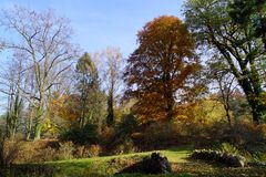 Autumn park and stone bridge royalty free stock photo