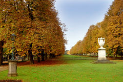 Autumn park in the sunlight Royalty Free Stock Photos