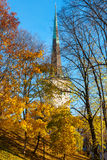 Autumn park. Tallinn. Estonia Stock Photo