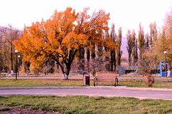 Autumn park in Tekeli Stock Images